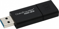 Kingston DT100G3